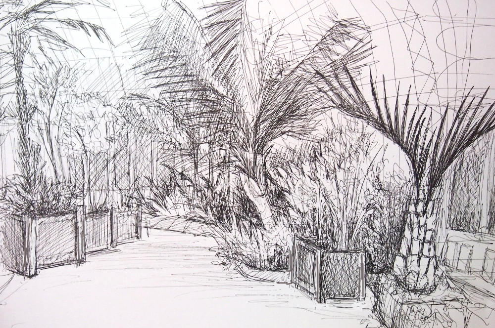 palm house drawing