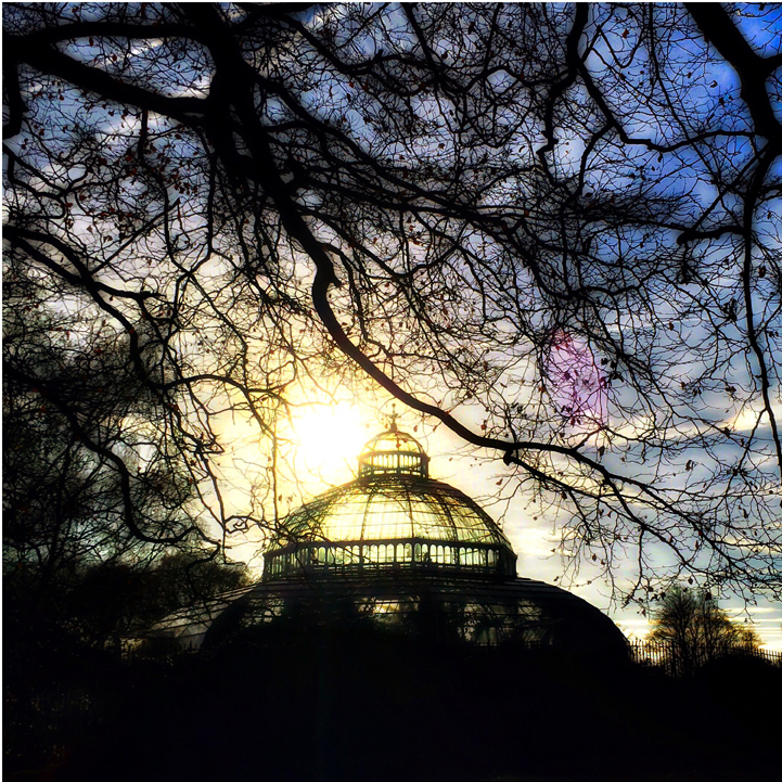 Palm House Sefton Park