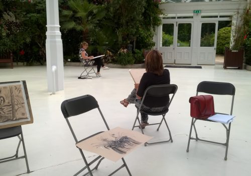 drawing in the palm house
