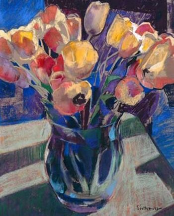 open tulips by john sutherst