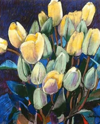 opening tulips by john sutherst