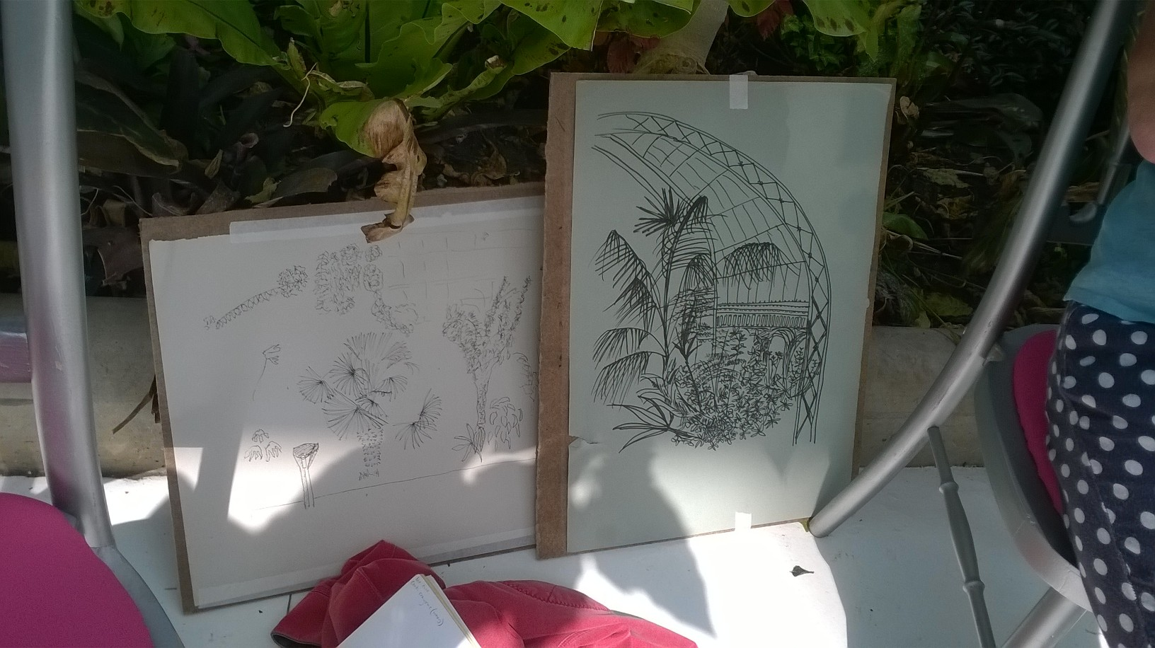 Sketching in the Palm House