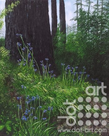 Spring Forest Floor by Hazel Thomson