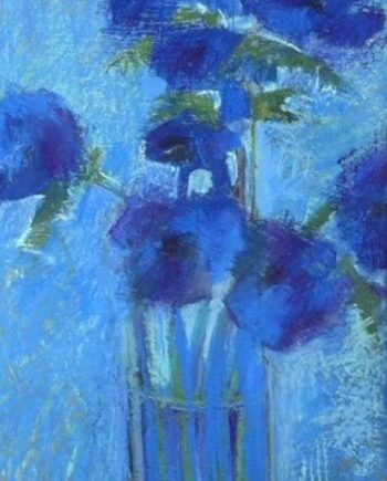 blue anemones by john sutherst