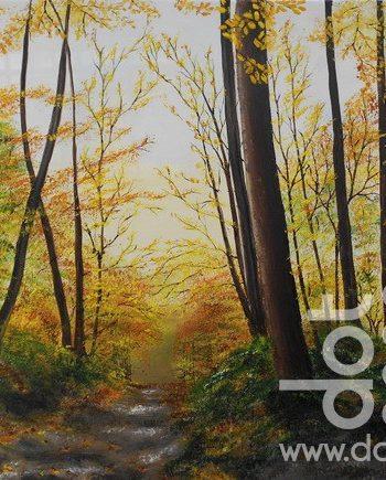 forest glow by hazel thomson