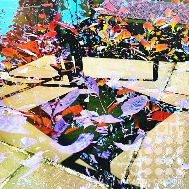 garden 002 by david john pearson