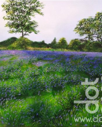 lavender by hazel thomson