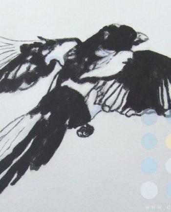 magpie by susan lee brown