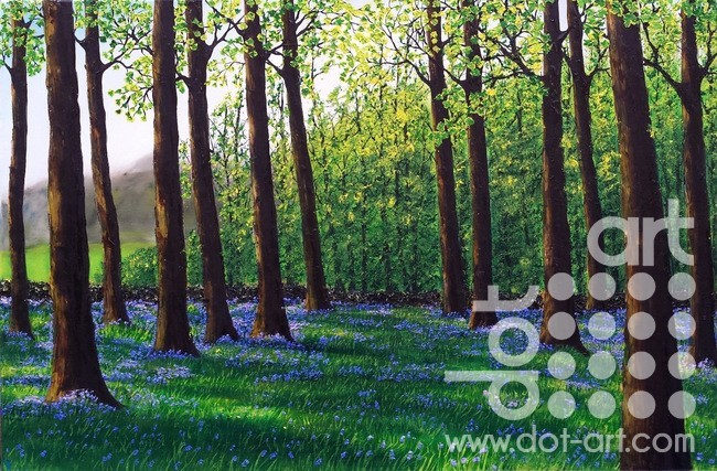 morning bluebells by hazel thomson