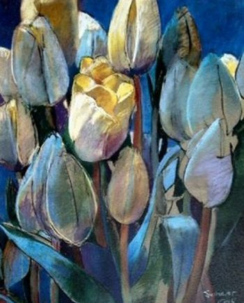 nascent tulips by john sutherst