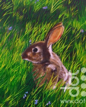 rabbit in the grass by hazel thomson