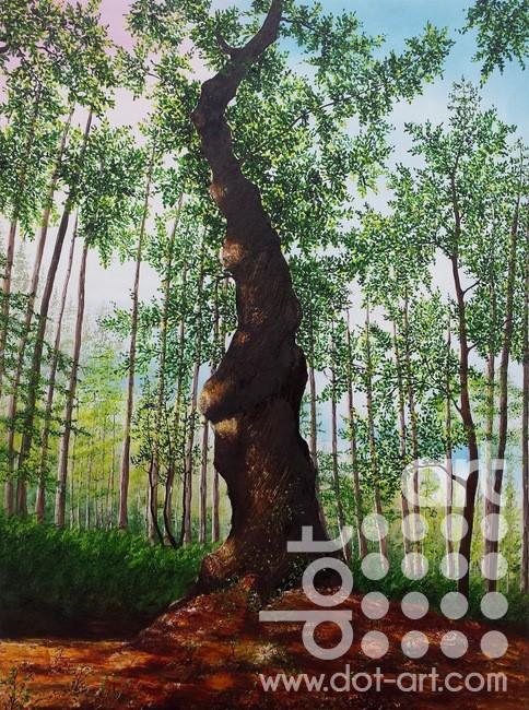 twisted tree by hazel thomson
