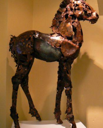 Heavy Horse Foal by