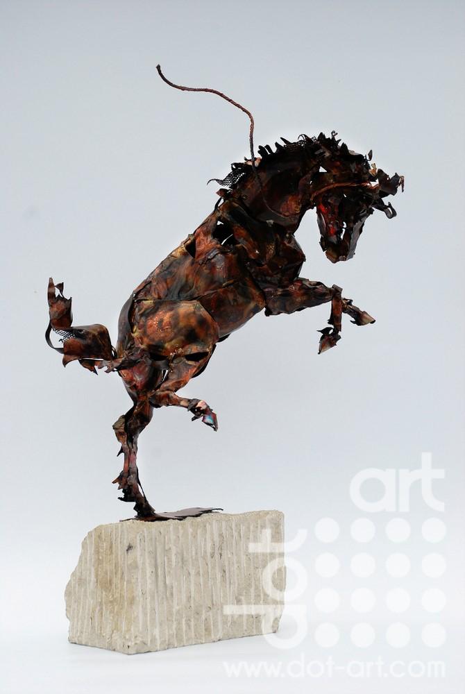 Wild Horse by