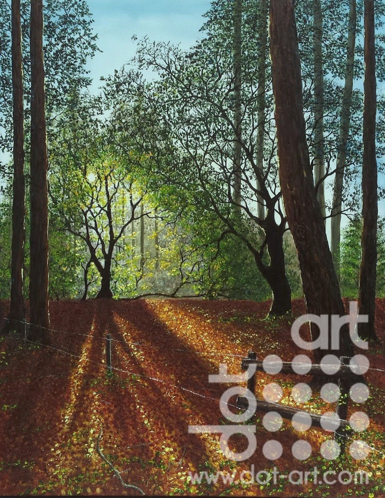 Forest Clearing by Hazel Thomson