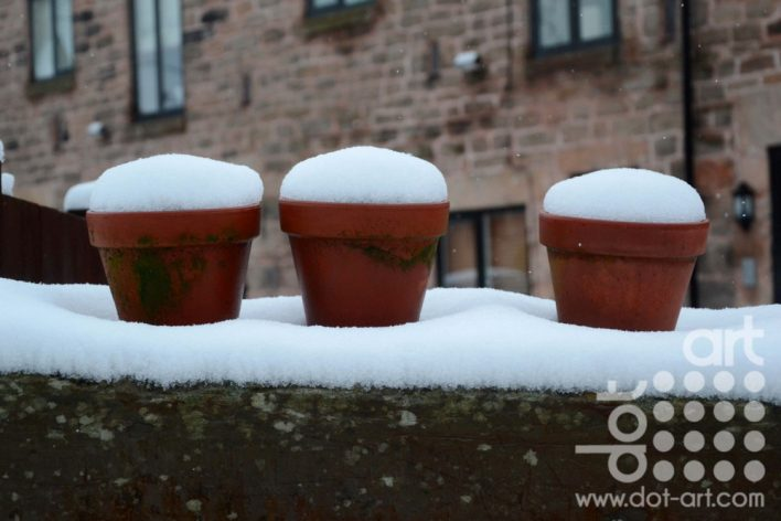 Plants Pots with Snow by Olivia June