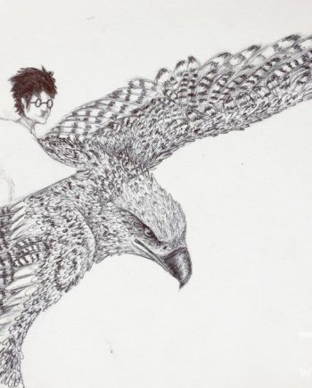 Hyppogriff & Harry by Nyah Boorman