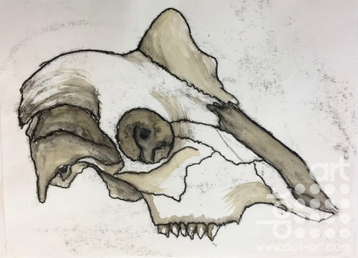 Ram Skull by Nyah Boorman