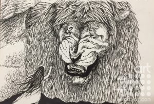 Lion and the girl by Nyah Boorman