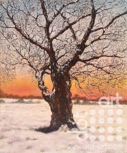 Winter Oak by