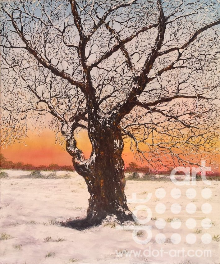 Winter Oak by