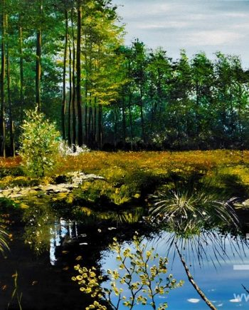Late Afternoon on Doolittle Moss by Hazel Thomson