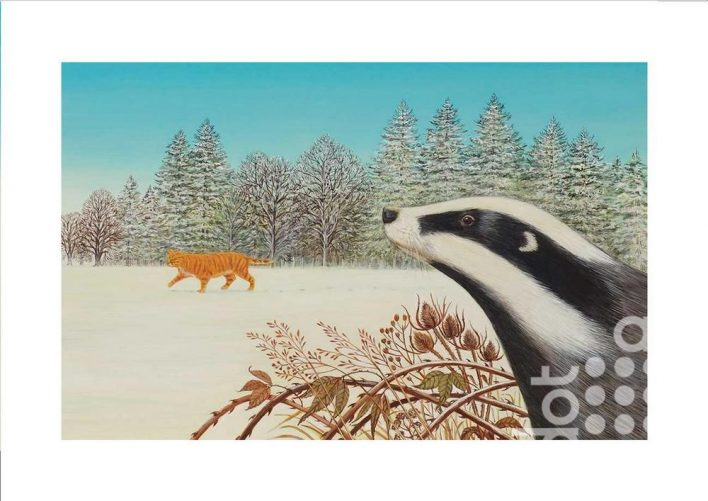 Badger by Frances Broomfield