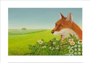 Fox fields by Frances Broomfield
