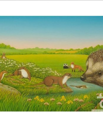 Hedgehog by Frances Broomfield