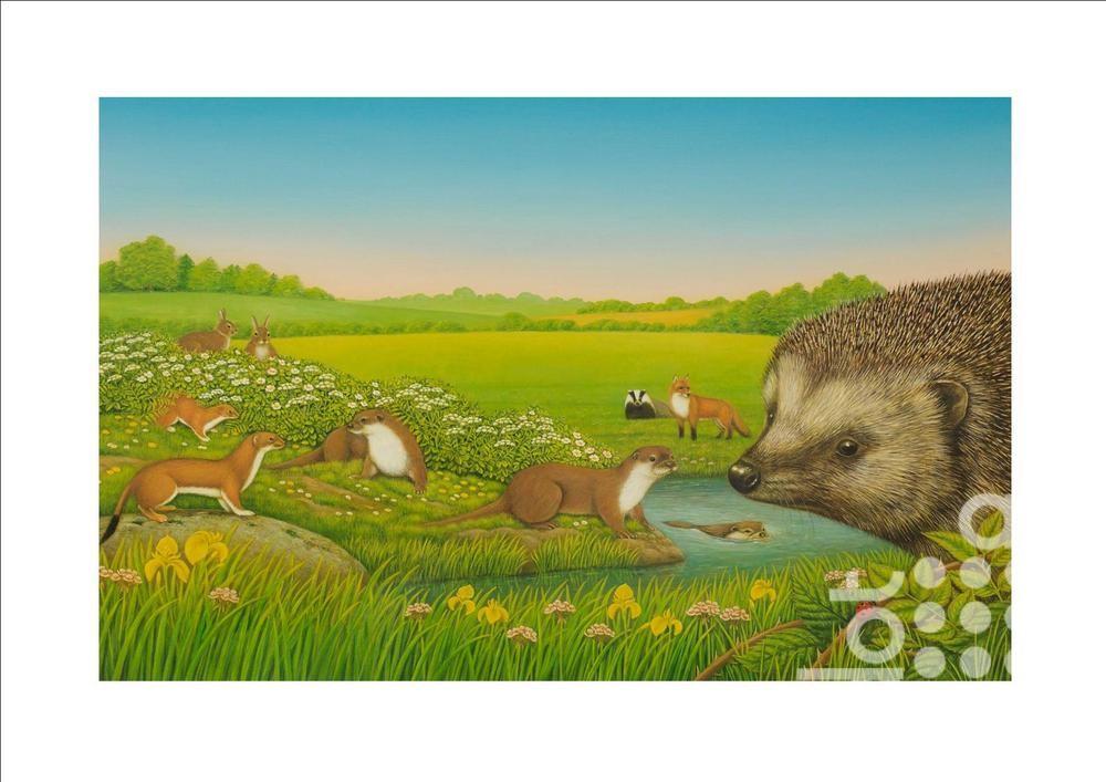Hedgehog by Frances Broomfield