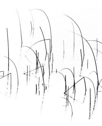 Reeds-in-the-Breeze-II-mark-reeves
