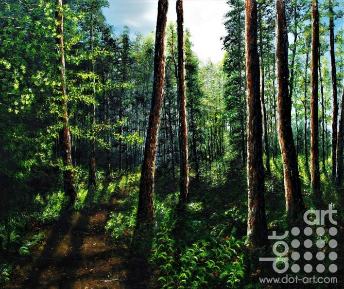 light through the forest by hazel thomson