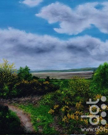 heswall dales by hazel thomson