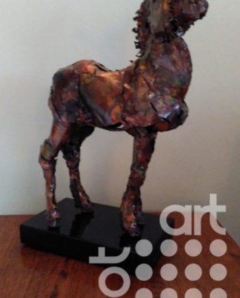 Donkey Foal by Tony Evans