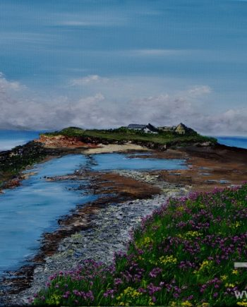 hilbre Island by hazel thomson