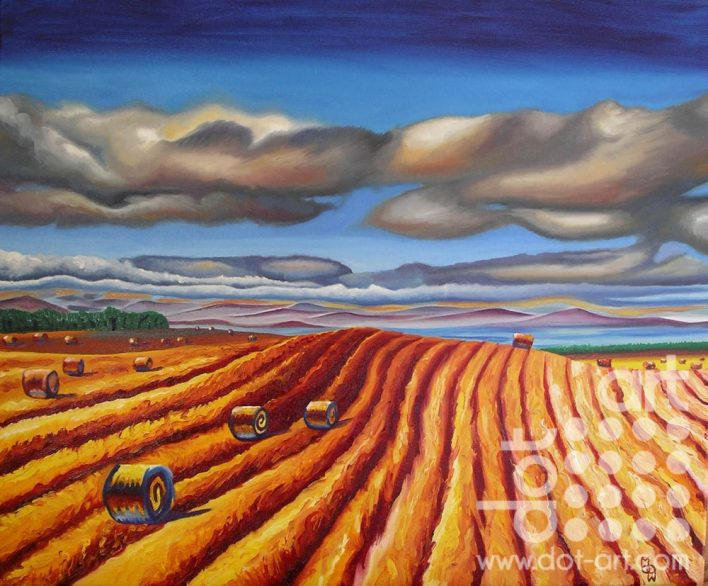 rolling field by Madeleine pires