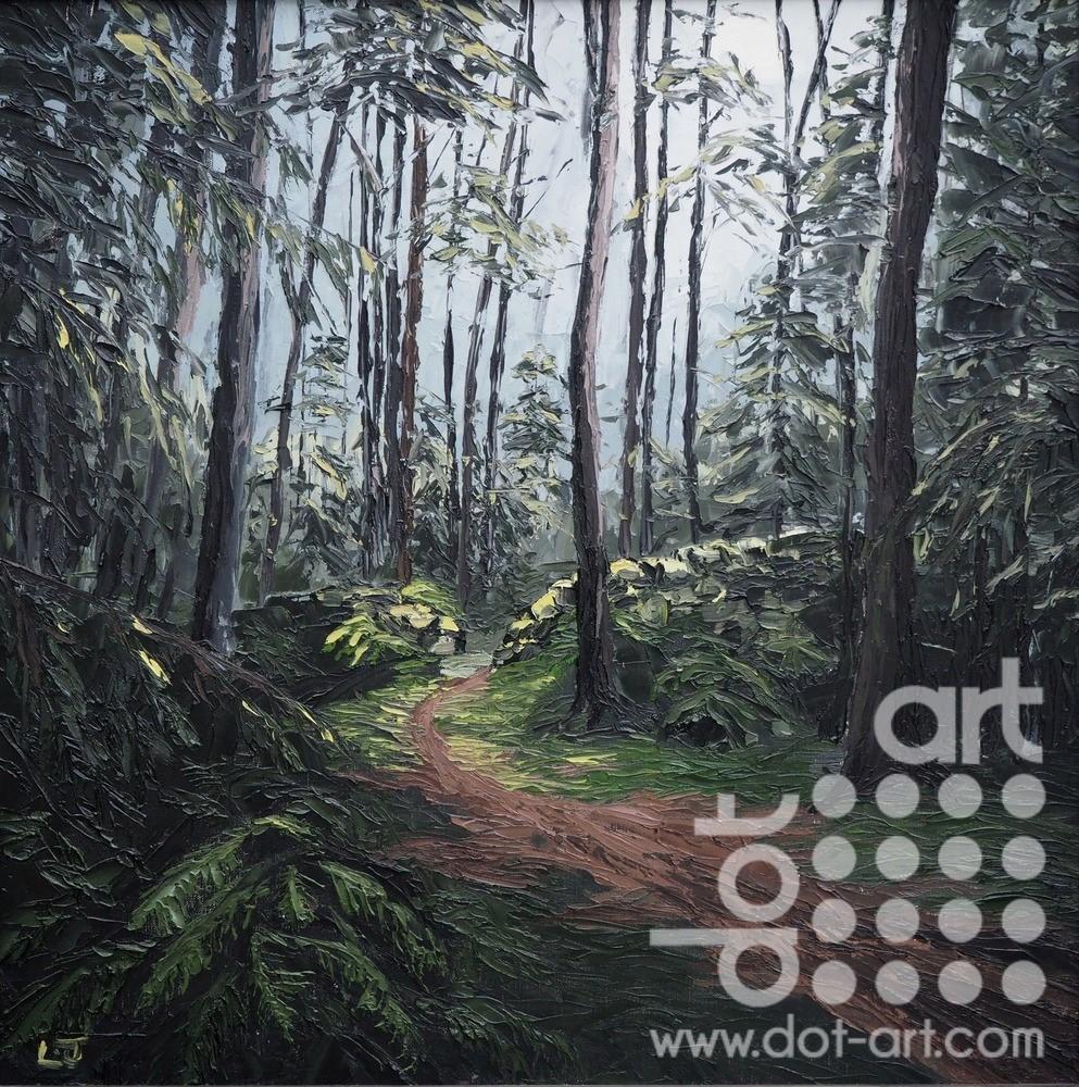 Forrest Path, Tyn y Groes by Huw Lewis-Jones