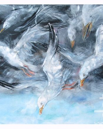 Cloud-Gulls-John-Sharp