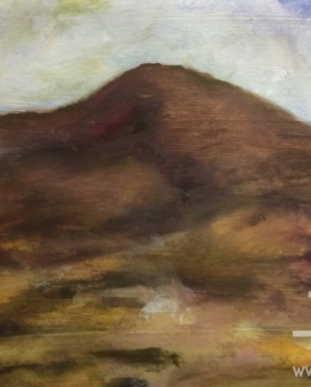 Foel Lus by Dorothy benjamin