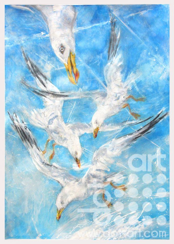 Gulls-Contrails-John-Sharp