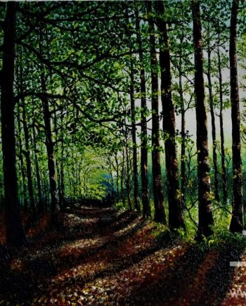 Illuminated Forest Light by Hazel Thomson