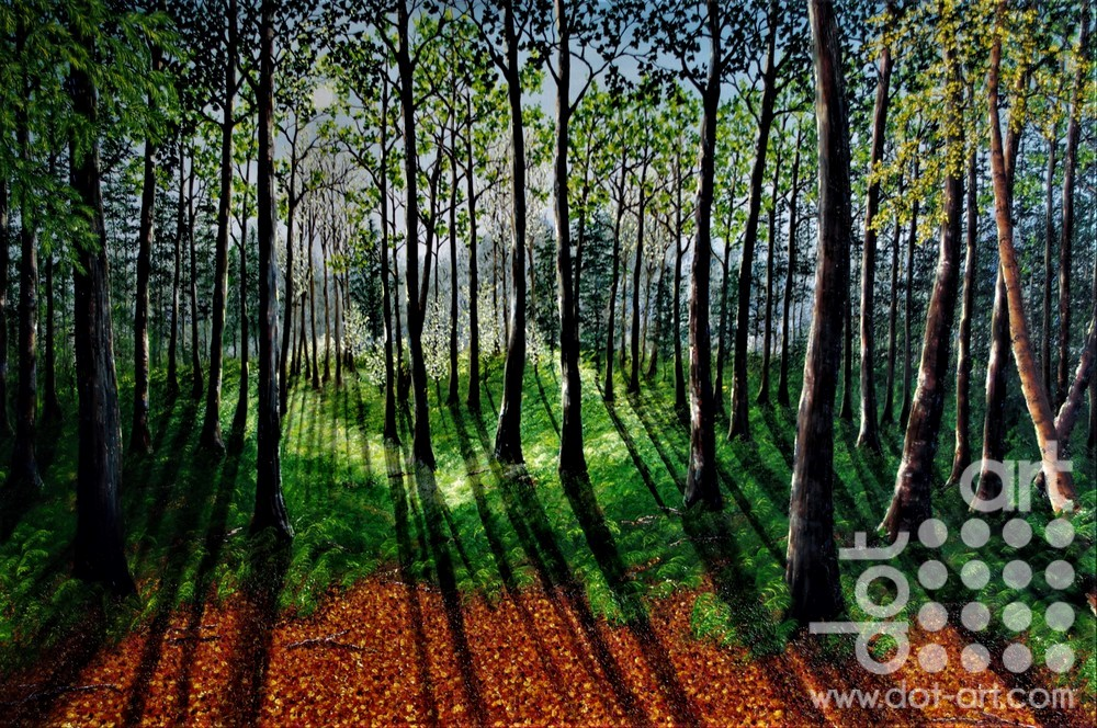 Into the Heart of the Forest by Hazel Thomson
