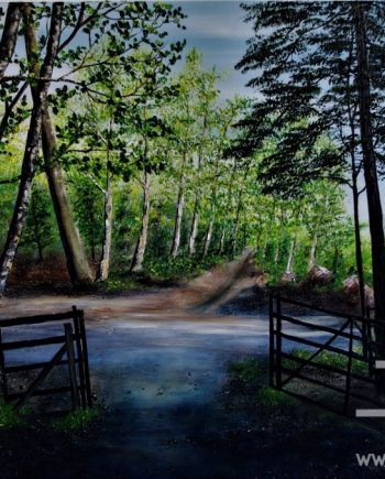 Step Into the Light by Hazel Thomson