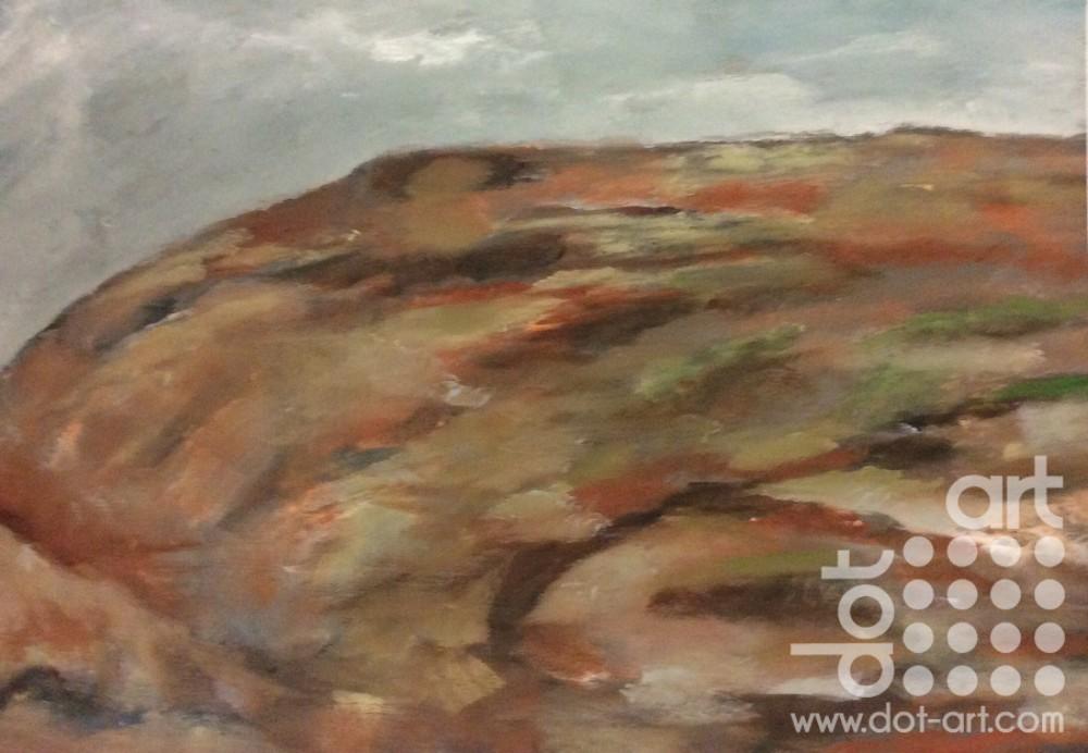hillside ceredigion coast by dorothy benjamin