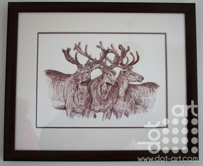 Stags by Beryl jean Worth
