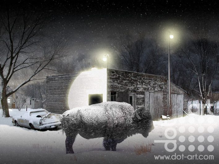 Buffalo-Blizzard by Vincent Kelly