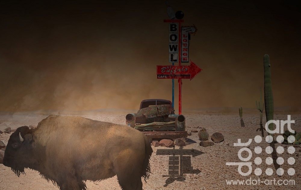 Buffalo-Dust-Bowl by vincent kelly