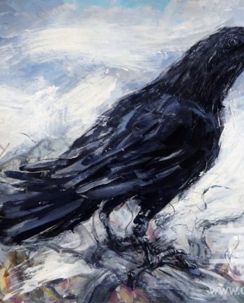 Raven Highgate 2 by john sharp