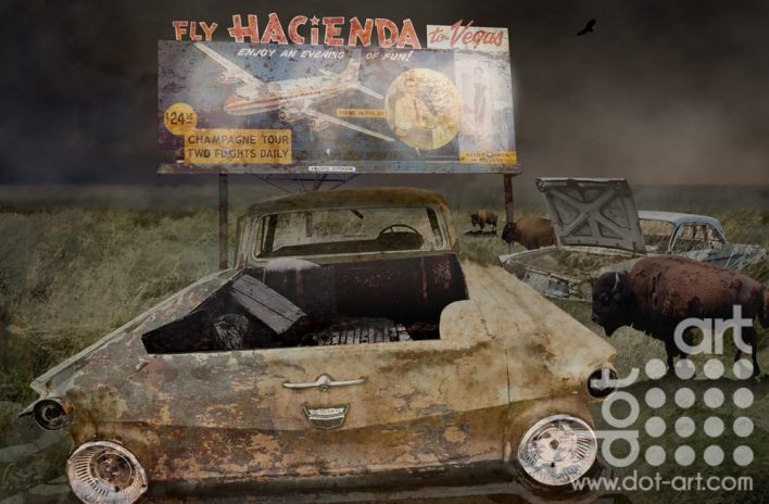 Fly Hacienda  by Vincent Kelly