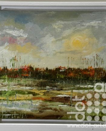 Marshes by Steve Bayley